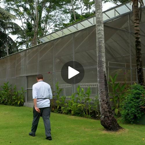 Apéritif Greenhouse