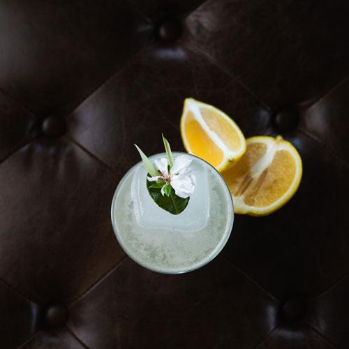 Lemon-3-Times